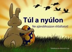 tul-a-nyulon