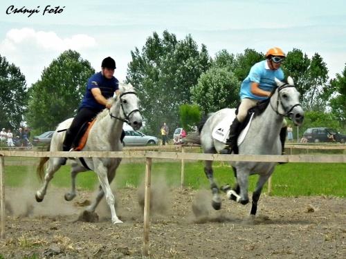 kocseri-vagta2011-kep