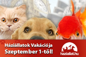 haziallatok-vakacioja-nyeremenyjatak-banner