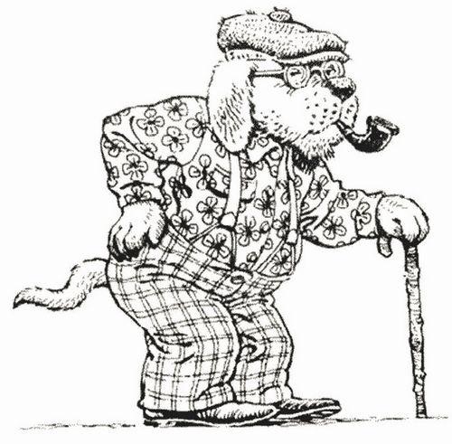 öreg kutya
