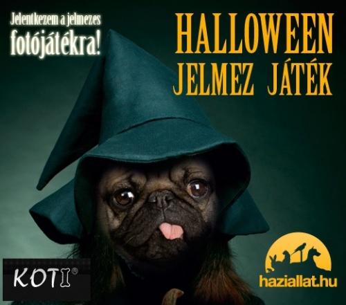 haziallat_halloween_520x450_mopsz_koti