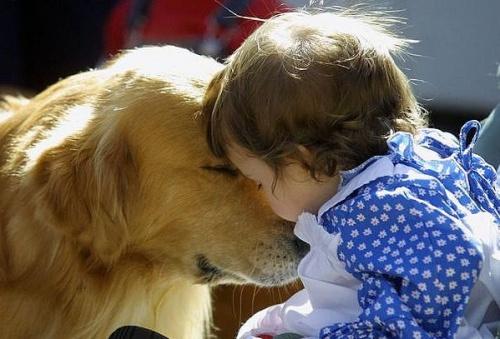 kutya és gyerek