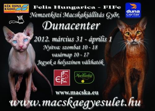 Felis Hungarica Macskakiállítás Győrben
