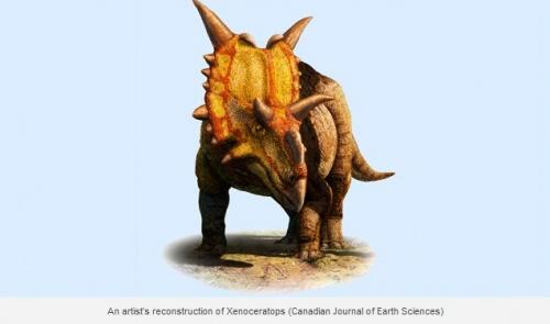 xenoceratops1