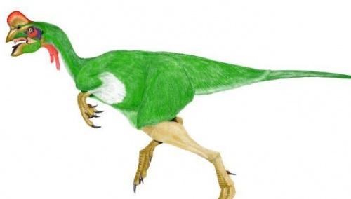 pava_dinoszaurusz