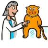 Állatorvosi rendelők címtára - ismersz jobb dokit?