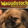 Wauudstock reloaded: a haziallat.hu rock-celeb kiadása