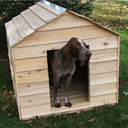 Milyen a jó kutyaház?