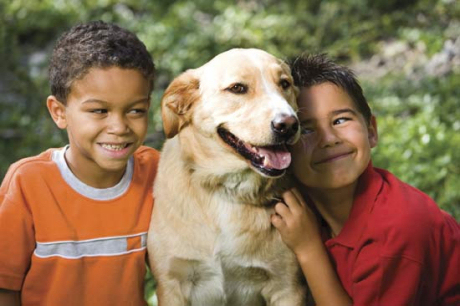 kutya, gyerek, stressz