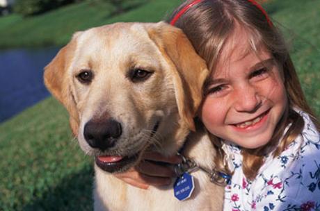 kutya, kislány