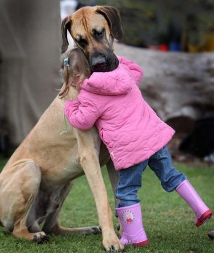 dán dog és gyerek