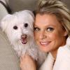 Országos kampány a gazdátlan kutyák megmentésére