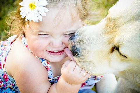 kutya, virág, kislány