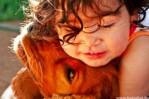 Lelkisegély állatoknak