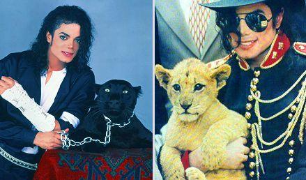 Michael Jackson állatbarát volt