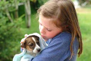 Tartalmas és hosszú kutya-gazdi kapcsolat: hogyan?