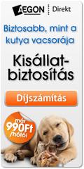 Aegon Direkt biztosítás kutyák és macskák részére