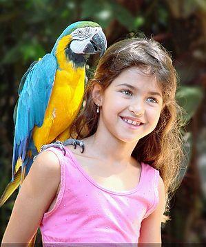 Kislány és papagáj