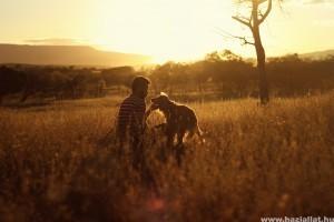 Toklász a kutya orrában, fülében tappancsában