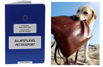 állatútlevél, pet passport