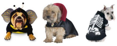 kutya-halloween