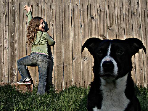 Kislány, aki fél a kutyáktól