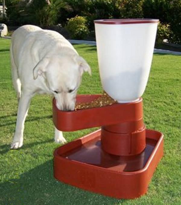 magasított kutyaetető