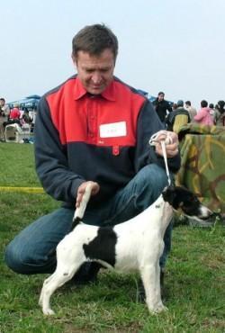 Paróczi Pál kishegyesi kutyatenyésztő
