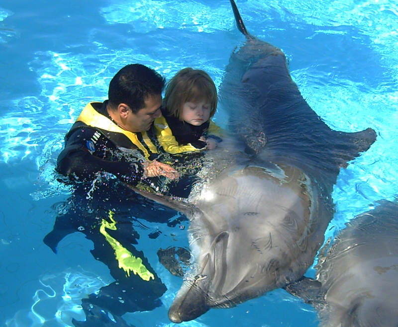 delfin terápia