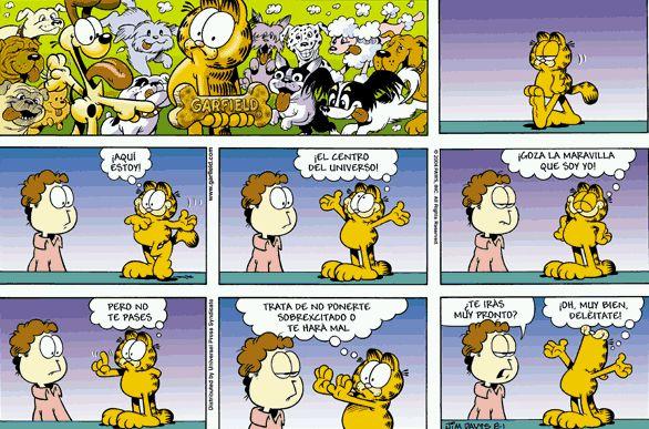 Garfield képregény