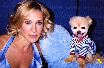 Carrie Bradshaw és Mr. Winkle
