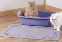 macskavécé, macskaalom, macskakő