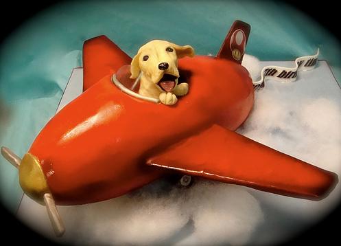 repulo-kutya