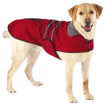 Kutyakabát
