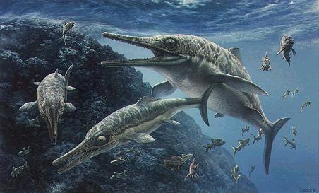 Ichthyosaurus, dinoszuaurusz
