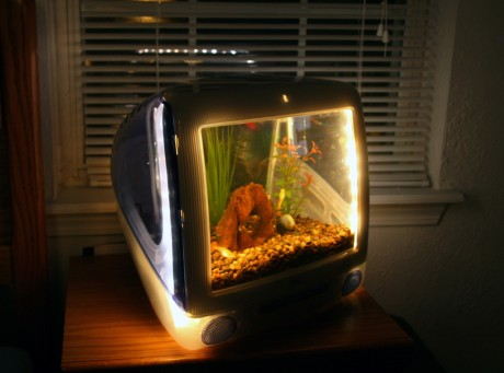 Akvárium monitorból
