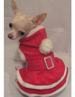 karacsonyi-piros-kutyaruha