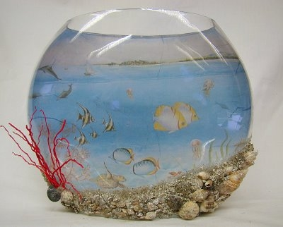gömb akvárium