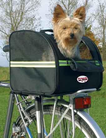kutya, kutyahordozó, bicikli