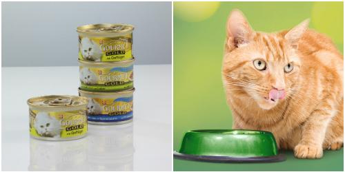 fressnapf, macskatáp, gourmet gold