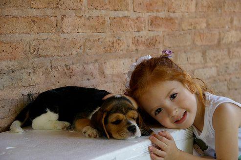 beagle-es-gyerek