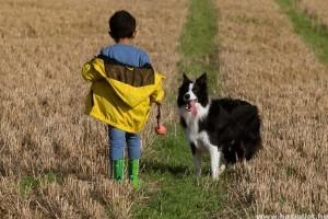 Milyen kutyafajták vannak jó hatással a gyerekekre?
