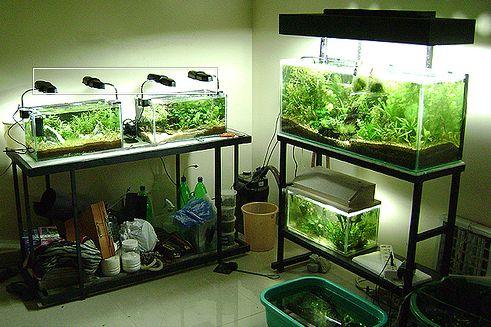Аквариум освещение для растений своими руками 61