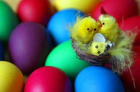 csbe, húsvét, dísz