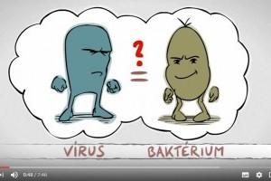 Vírus vagy baktérium? 7 perces szuper videón a lényeg!