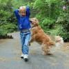 Párzást utánzó viselkedés a kutyánál