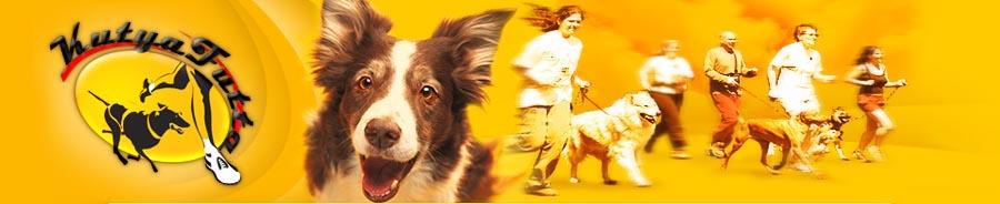 futoverseny-kutyaval