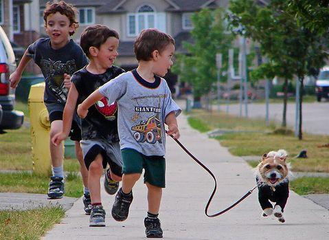 gyerek-kutyat-setaltat