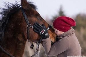 A gyógyító állatok sokféleképpen segíthetnek