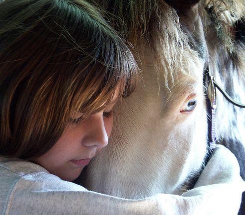 ló, állat, lovaglás